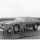 v8_vantage_prototype_with_dogs_1977
